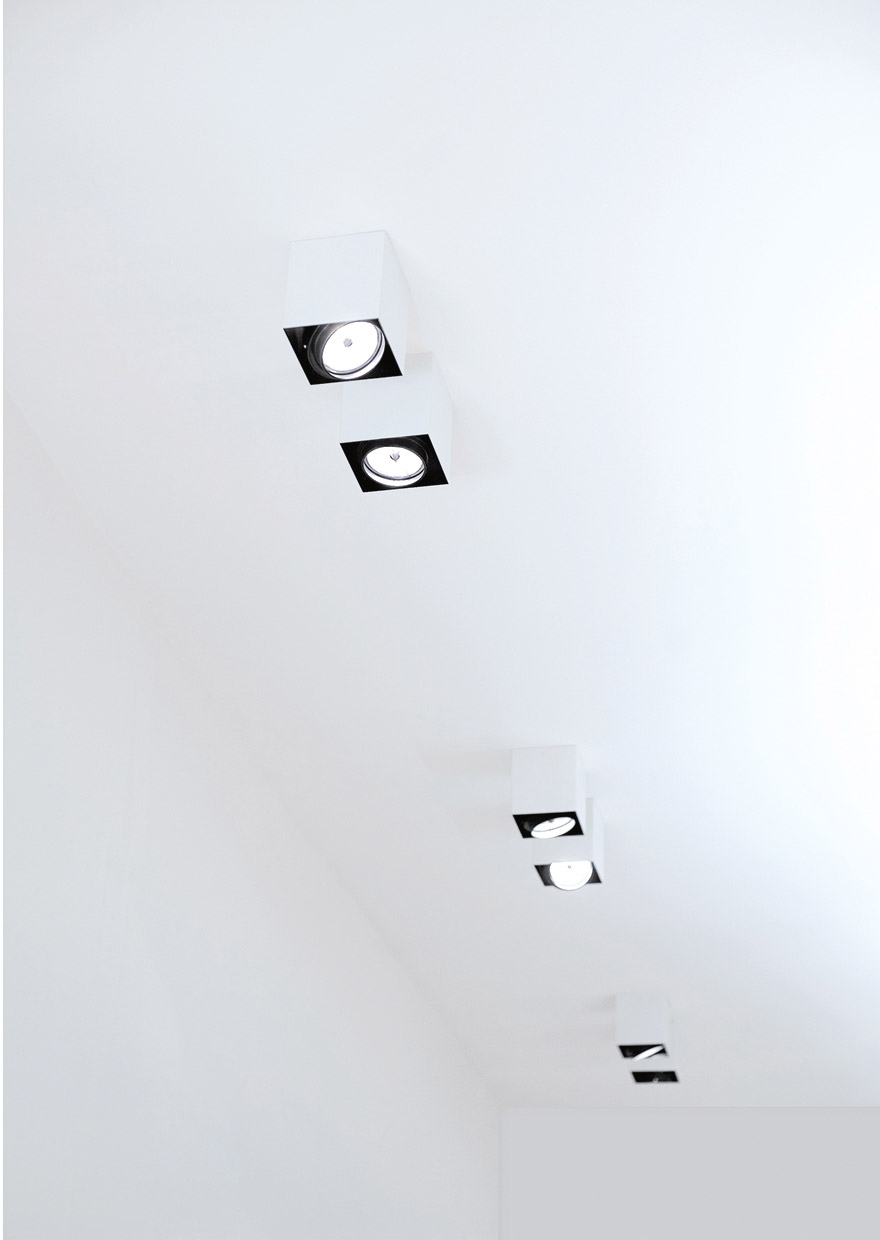 PUNTO PL - Ceiling lamp with adjustable spotlight