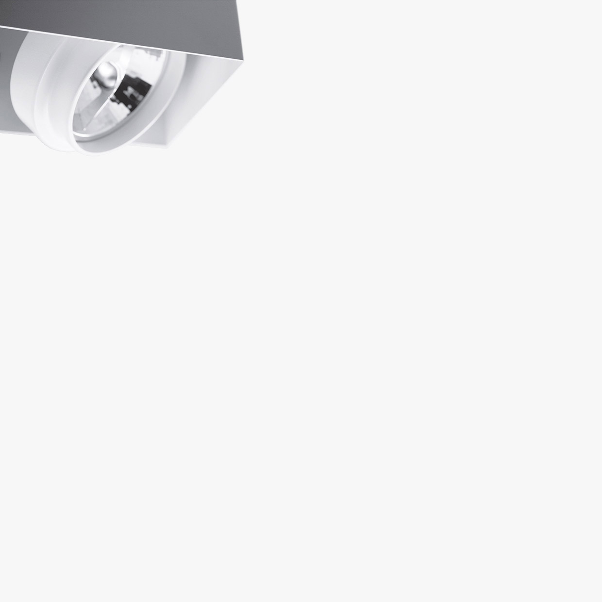PUNTO 2 PL - Ceiling lamp with adjustable spotlight